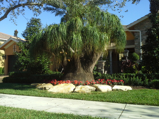 Landscape Design Broward,Outdoor Living Spaces Broward,Outdoor Kitchen  Broward,Outdoor Living Areas